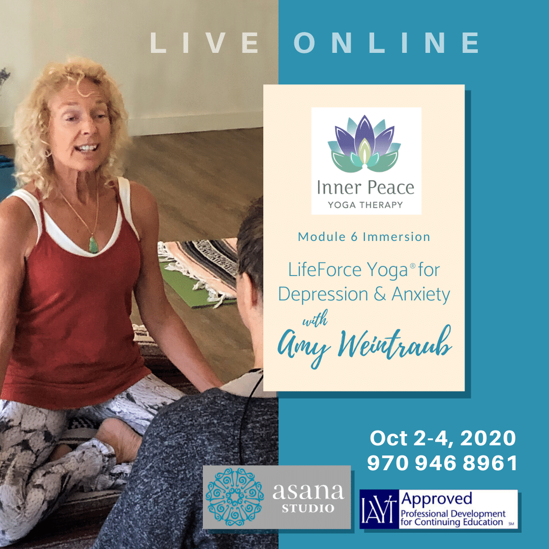 Lifeforce Yoga For Depression And Anxiety Immersion Colorado Online Amy Weintraub
