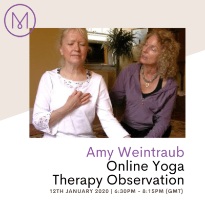 Amy Yoga Therapy, one on one